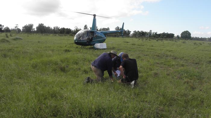 Aerial Survey-16